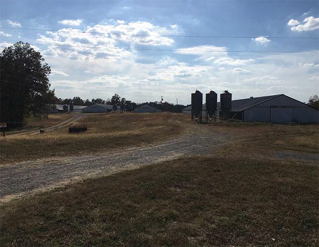 110 acres in Baileyton