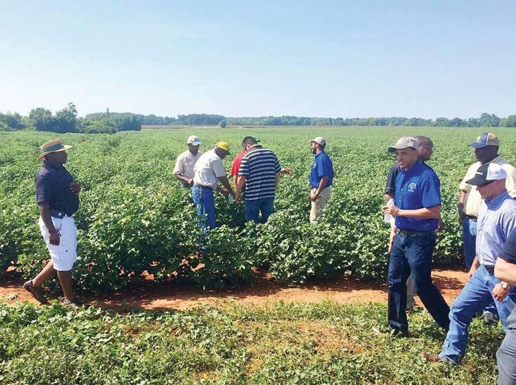 Black growers ag tour