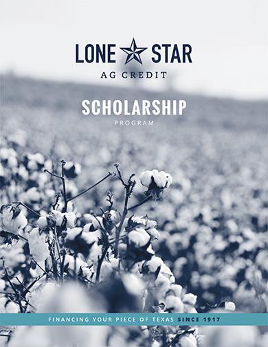 2019 scholarship application