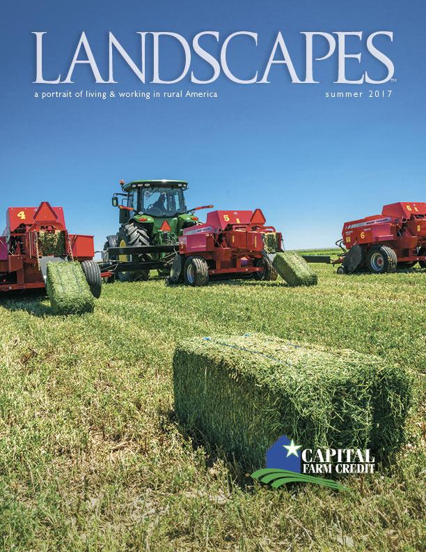 Landscapes Summer 2017