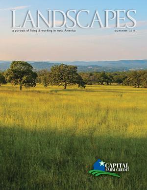 Landscapes Summer 2015